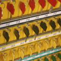 HTS 114-02 Wall-mounted key safe