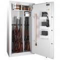WT 250-01 Gun safe